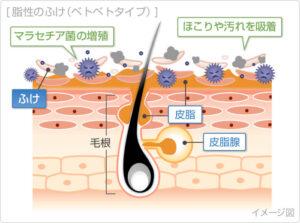 huke-bacteria