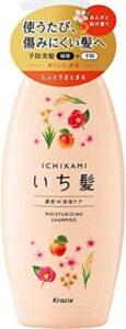 ichikami-shampoo-noumitsu
