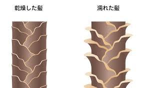 hair-kishimi