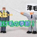 usuge-image (1)